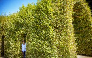 eva medilek relationship coach peeking out from shrubs